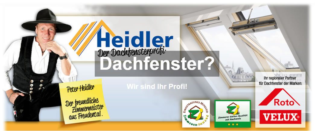 Dachfenster in  Neckarsulm
